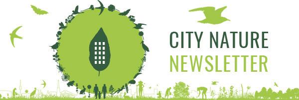 CITY NATURE NEWSLETTER